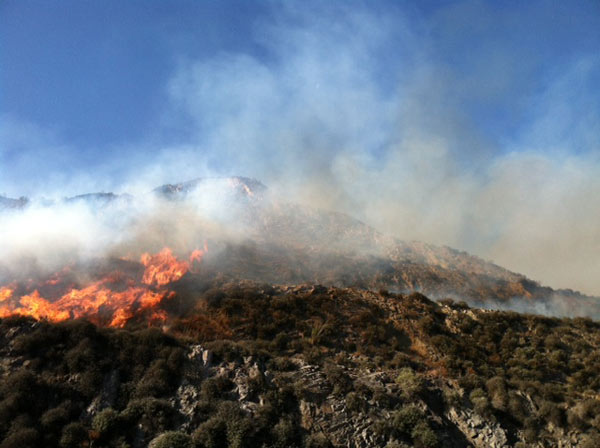 A brush fire broke out near the 101 Freeway in Camarillo Thursday, May 2, 2013. <span class=meta>(Jessica Holt)</span>
