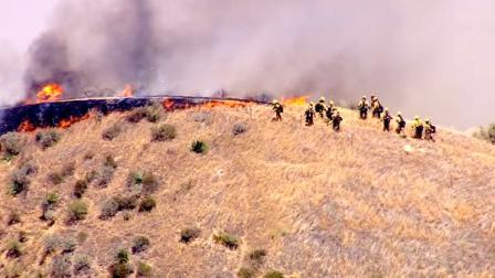 Crews battled a brush fire that burned along the 5 Freeway in Castaic on Friday, June 8, 2012.