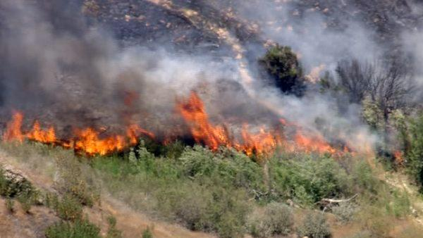 Flames consume brush along Interstate 5 in Castaic on Friday, June 8, 2012.