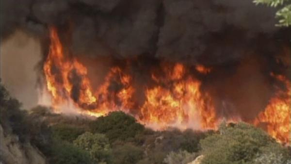 Wildfire threat in Southland high this summer