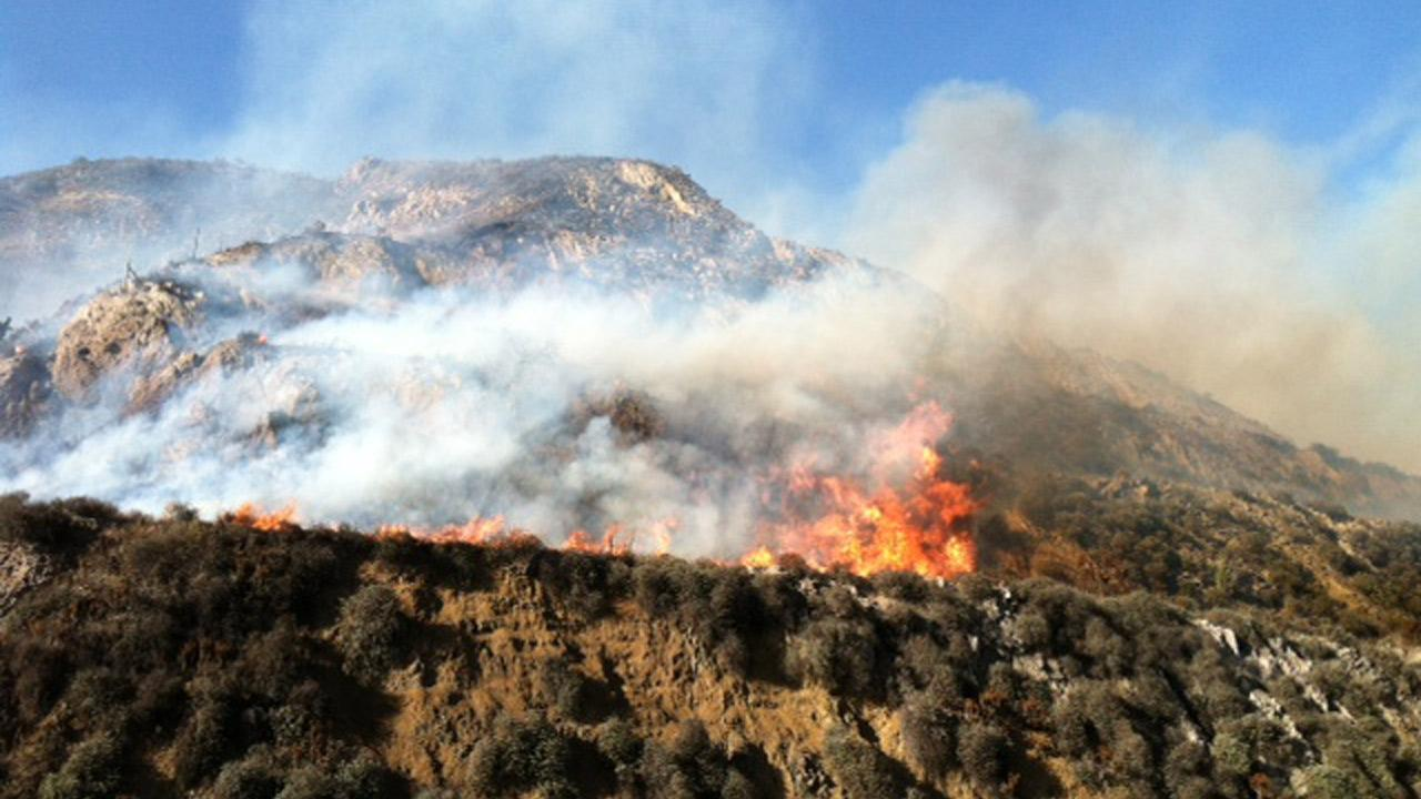 A brush fire broke out near the 101 Freeway in Camarillo Thursday, May 2, 2013.Jessica Holt