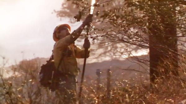 A firefighter douses trees and brush to defend against the Powerhouse Fire, which continued to burn in the Angeles National Forest north of Santa Clarita on Monday, June 3, 2013.