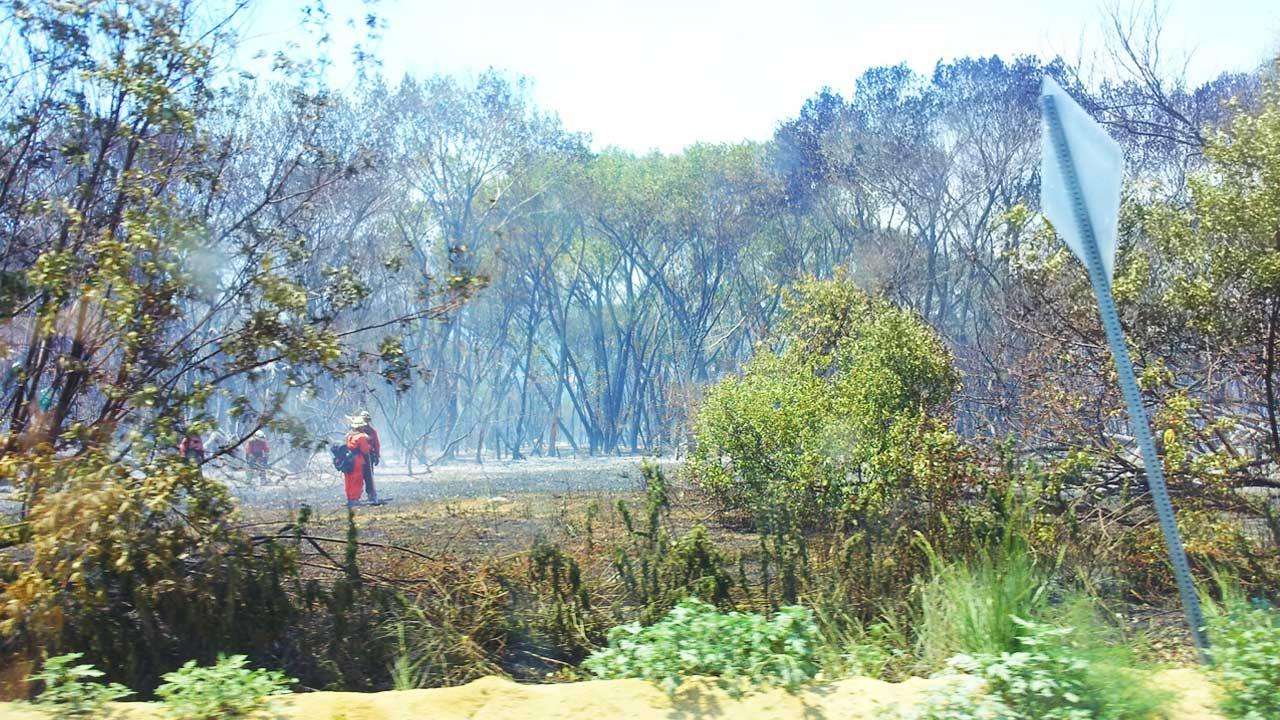 ABC7 Viewer Susan Weber sent in this picture of firefighters surveying fire damage from the Powerhouse Fire on Monday, June 3, 2013. <span class=meta>(Susan Weber)</span>