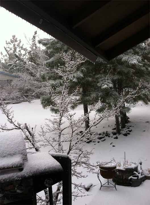 ABC7 viewer Ange Meeks sent in this photo of a snow in Wrightwood via Facebook on Saturday, March 1, 2014. When You Witness breaking news, or even something extraordinary, send pictures and video to video@abc7.com, or post them to the ABC7 Facebook page or to @abc7 on Twitter  <span class=meta>(Ange Meeks)</span>