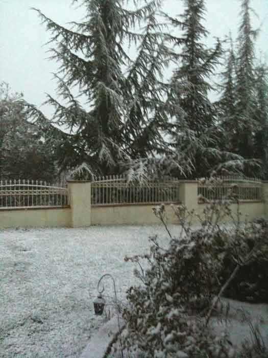 ABC7 viewer Yvette sent in this photo of snow in...