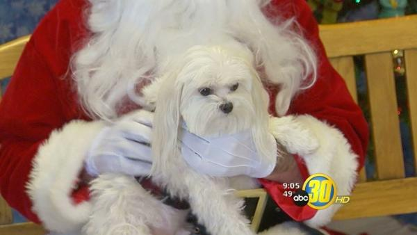 Santa Paws event benefits no-kill shelter