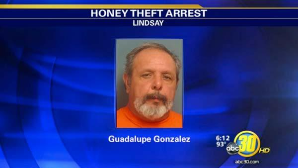 Lindsay man pleads no contest to honey embezzlement
