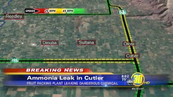 Ammonia leak at Cutler fruit packing plant
