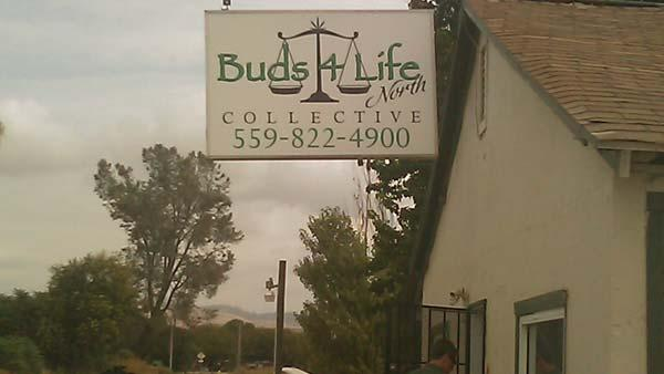 The Friant Buds 4 Life was targeted by DEA and Fresno county Sheriff's Office.