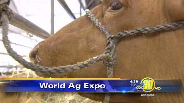 World Ag Expo comes to a successful end