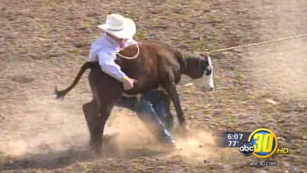 Clovis Rodeo is being called a huge success