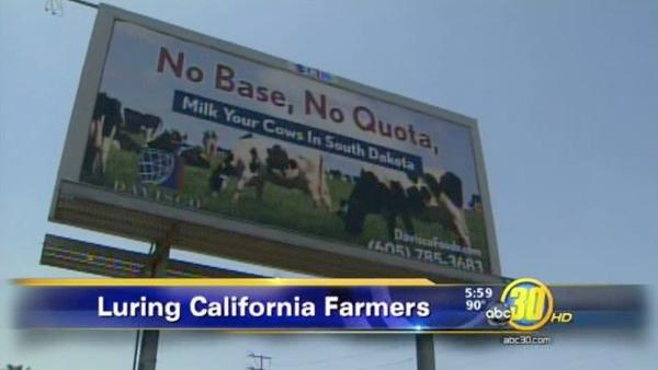 Dairy-baiting billboards popping up in the Valley