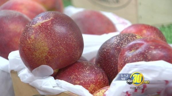 Summer brings with it the stone fruit harvest