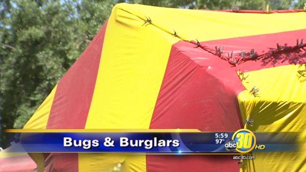 Burglaries rising at homes being fumigated