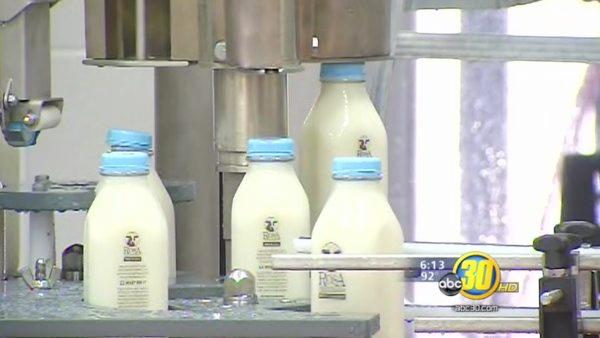 Local dairy takes an old-school approach to bottling milk
