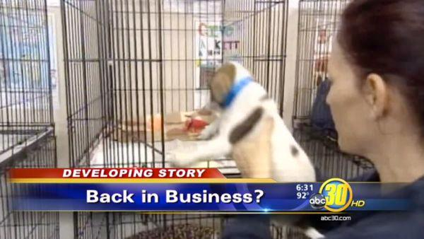 Fresno opens talks with CCSPCA