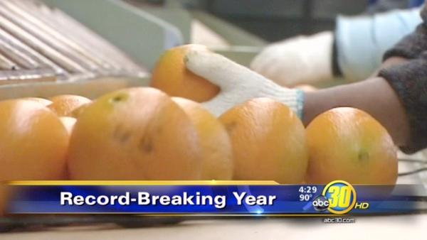 Record-breaking year for Fresno County growers
