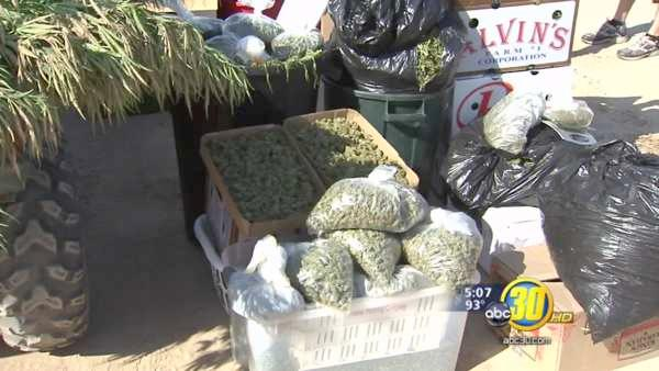 Feds wrap up six month pot crackdown