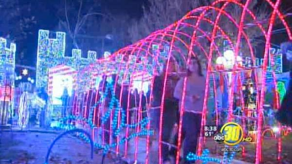 Walkers Turn Out To Christmas Tree Lane