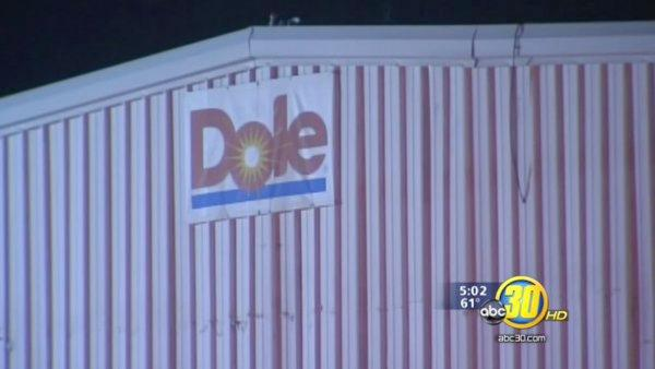 Workers return to Dole plant after ammonia leak