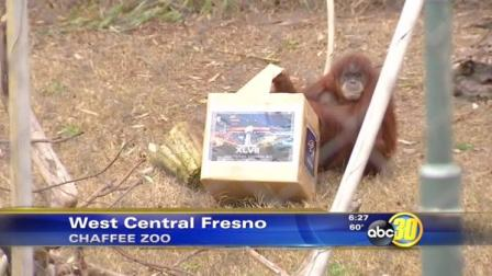 Fresno chaffee zoo coupons