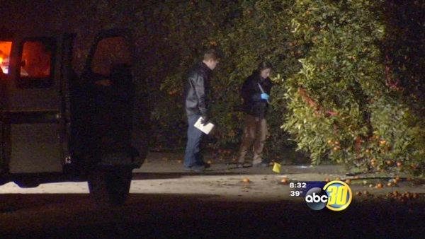 Fresno Co. Sheriff's find dead body in orchard