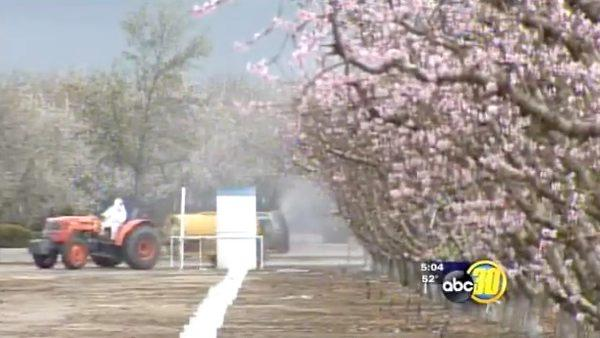 Wet weather worries some Valley growers