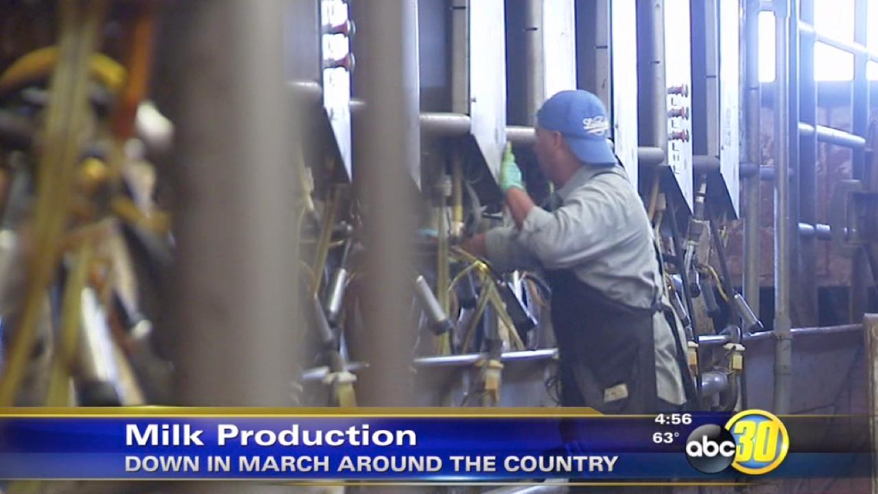 U.S. milk production went down in March