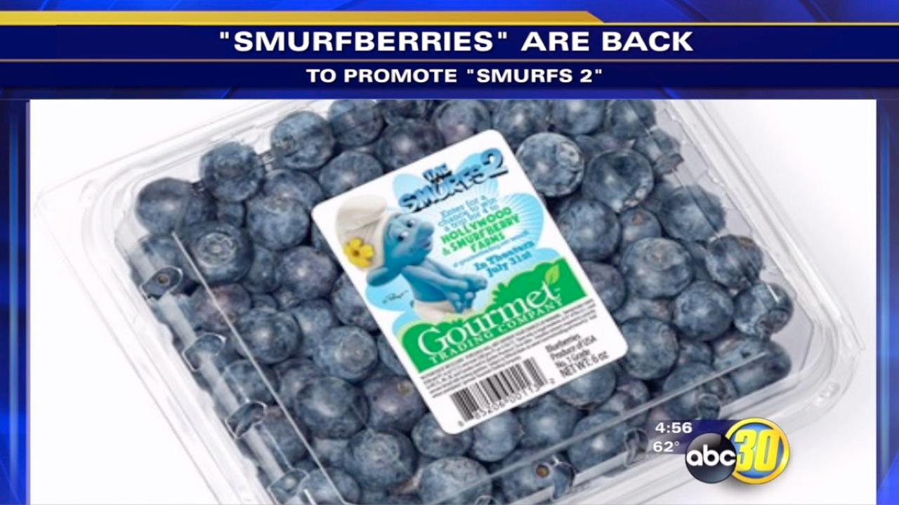 The Smurfberries are back!
