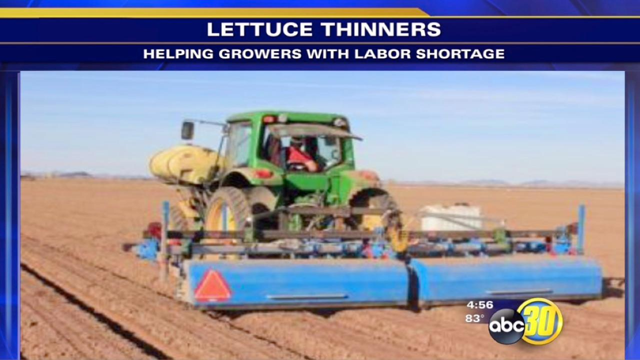 Lettuce thinners are helping growers deal with a labor shortage