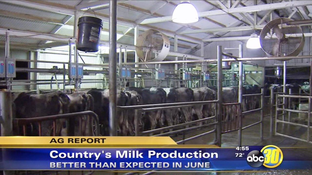 Milk production increase in 2013