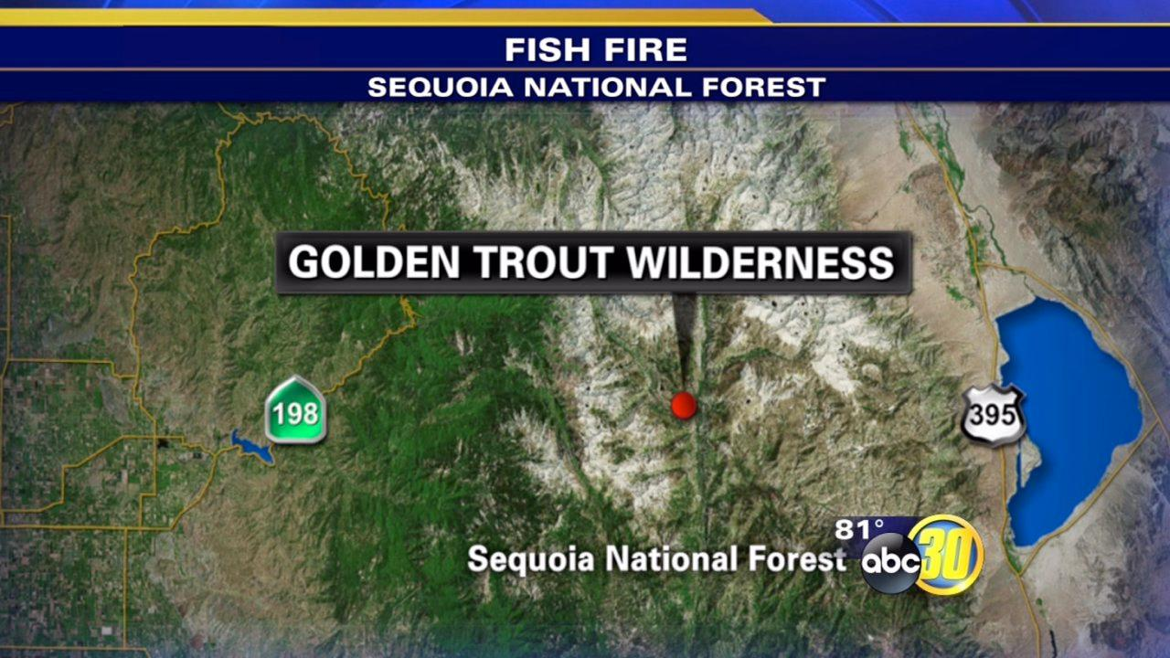 Fish Fire burns 1,000 acres in the Sequoia National Forest