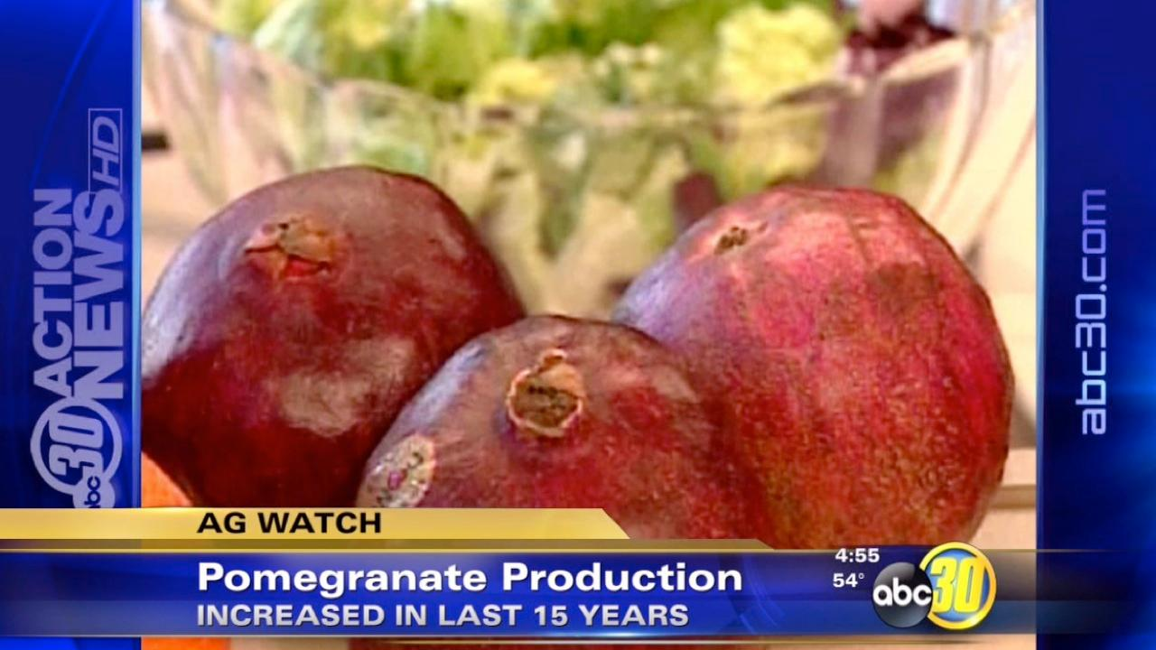 California's production of pomegranates is going up