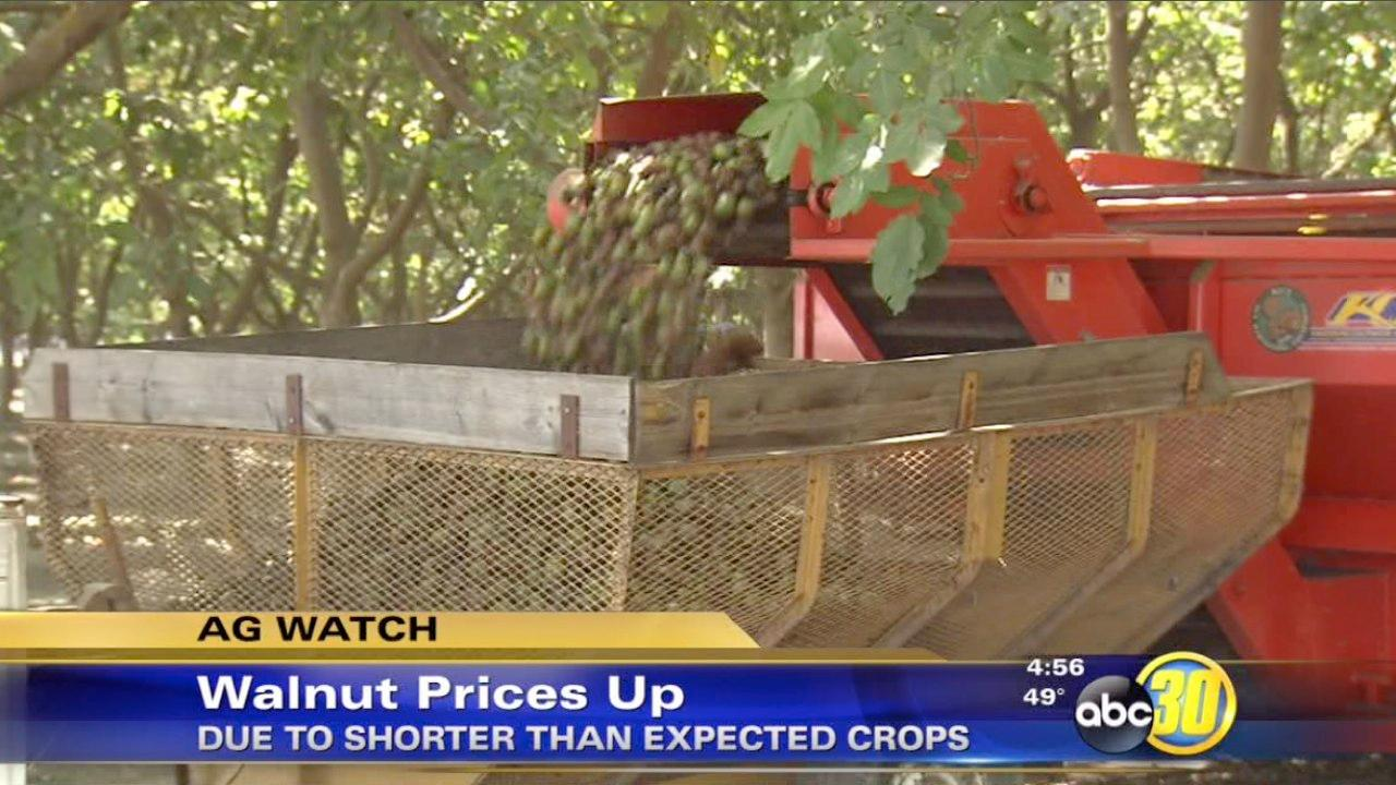 Walnut growers say they're seeing record-high prices