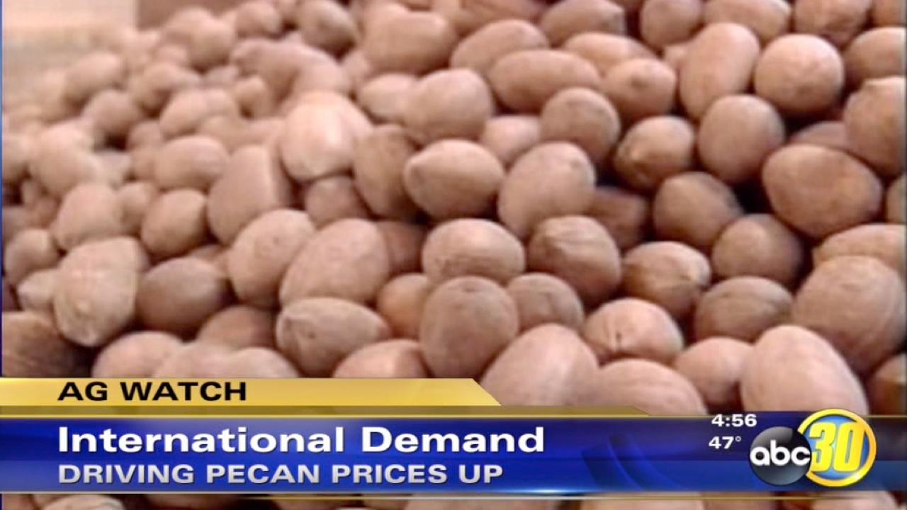 International demand for pecans may be causing a surge in prices
