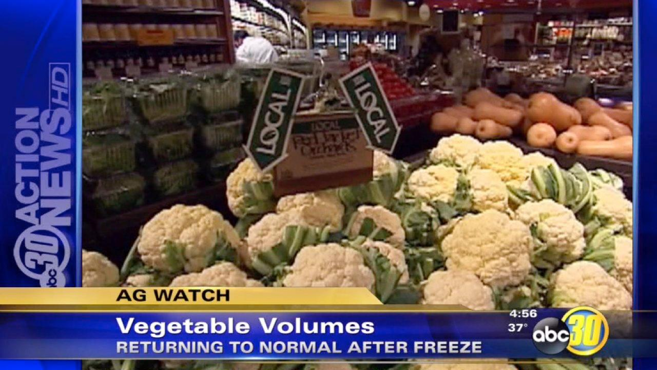 Vegetables supply stable after freeze