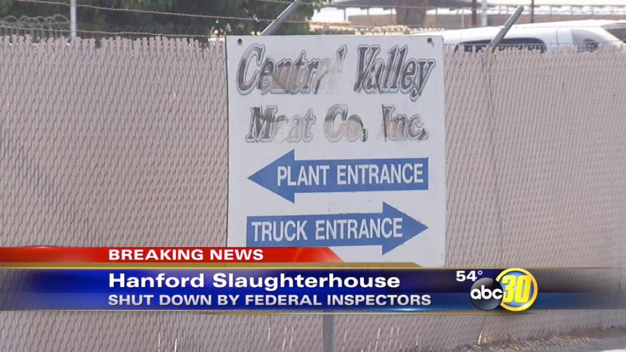 Federal inspectors shut down Hanford meat producer