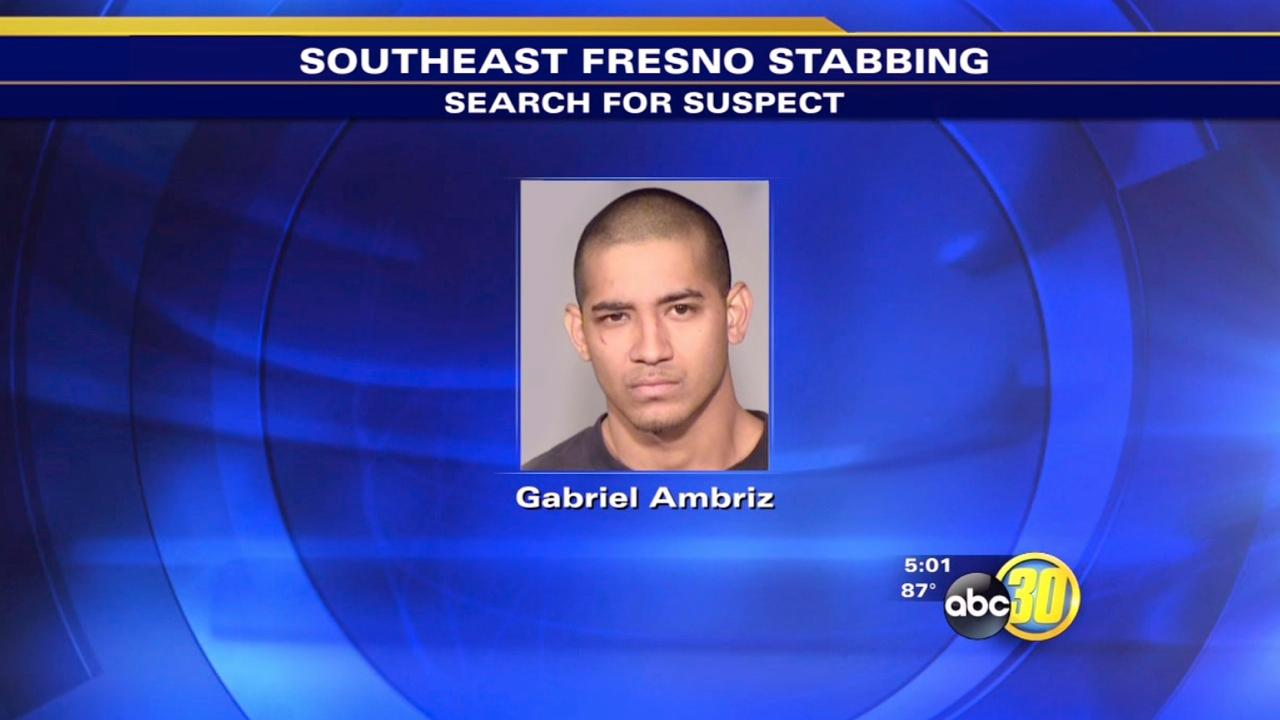 Suspect sought after man stabbed in fight over dogs