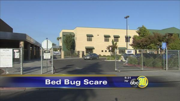 Olmos Elementary School gets sprayed for bed bugs