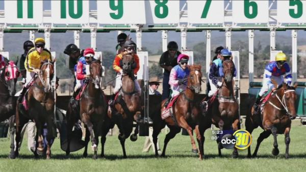 Safe from Scams: Horse track scam cons hundreds
