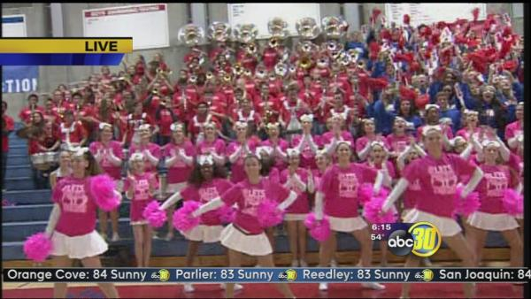 Friday Morning Football: Buchanan High Bears | 1 of 2