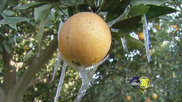 Below-freezing temps have Tulare County on alert
