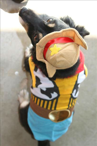 Kody as Woody