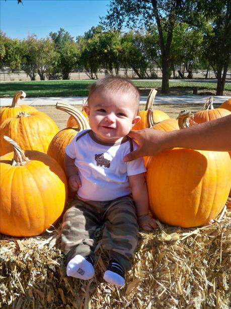 Michael&#39;s first time at the pumpkin patch ! <span class=meta>(8&divide;)</span>
