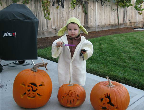 Yoda and his pumpkins <span class=meta>(KFSN Photo&#47; uReport.abc30.com)</span>