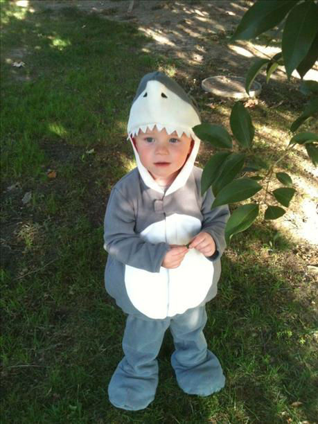 Brody @ Zoo Boo -- dressed as a Shark for Halloween! <span class=meta>(KFSN Photo&#47; uReport.abc30.com)</span>