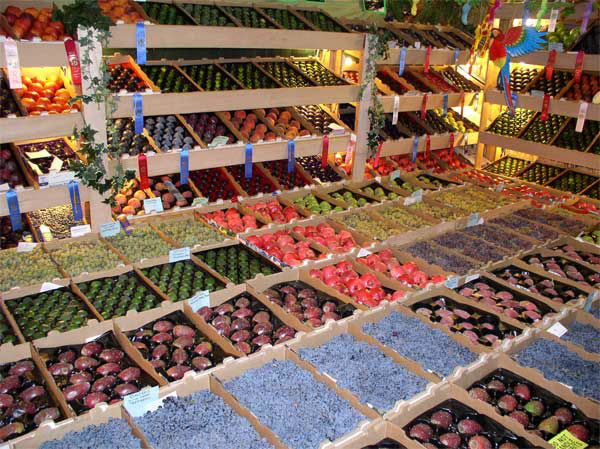 Colorful fruit display. <span class=meta>(Anonymous)</span>