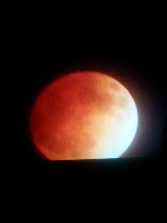 Blood moon as seen around the Valley <span class=meta>(KFSN Photo&#47; Facebook &#47; Daisy Vasquez)</span>