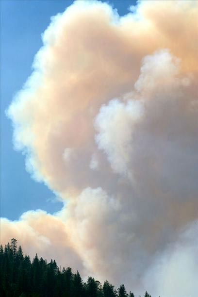 My husband &amp; I live in El Portal, just up the road from where the fire is burning. Not all of El Portal has been evacuated. We were given notice yesterday that evacuation is a possibility. <span class=meta>(Cindy Miller)</span>