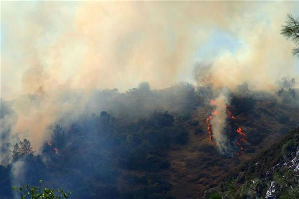 8&#47;27&#47;11 The helicopters kept dropping water, but the fire kept flaring up in spots. Taken in El Portal <span class=meta>(wingsofangels)</span>